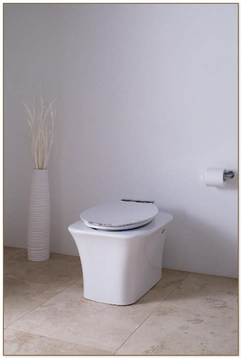 tankless toilet home depot
