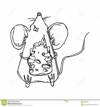 Mouse Eating Doodle Cheese Cartoon Shutterstock