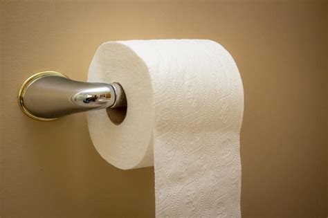 invention du papier toilette la question du papier de toilette enfin r 233 solue