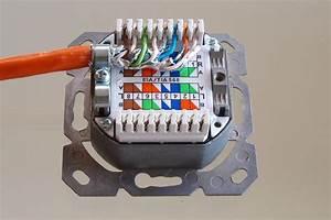 Cat 6a Dose : ligawo 2 fach netzwerkdose cat 6a ap up test und rezensionen zu elektronik ~ Buech-reservation.com Haus und Dekorationen