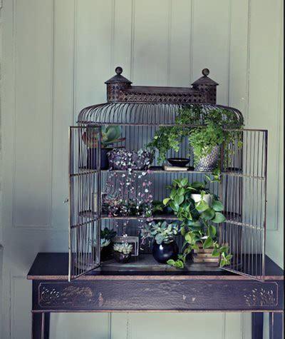 Gabbie Per Uccelli Decorative Gabbie Per Uccelli Decorative Trend Hub