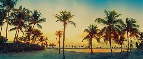 To Of Miami by Autob 250 S Tur 237 Stico Miami Hop On Hop Big Tours