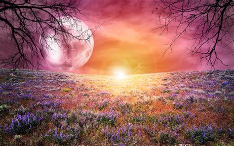 landscape, Fantasy Art Wallpapers HD / Desktop and Mobile ...