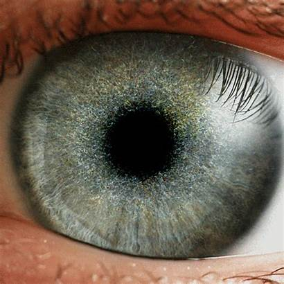 Eye Iris Gifs Hypnotic Eyes Loop Beholder