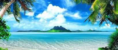 Tropical Island Ocean Palm 4k Ultra Trees