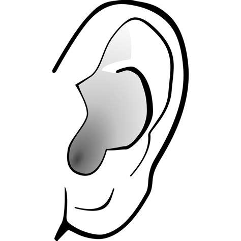 Ear Clip Ear Pictures Clip Cliparts Co