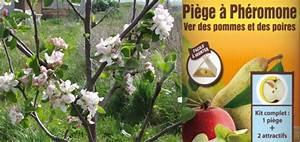 Protection Arbres Fruitiers : comment prot ger ses arbres fruitiers des d g ts des ~ Premium-room.com Idées de Décoration