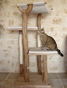 Arbre A Chaton : j 39 explore arbre chat mod le bor al http www ~ Premium-room.com Idées de Décoration