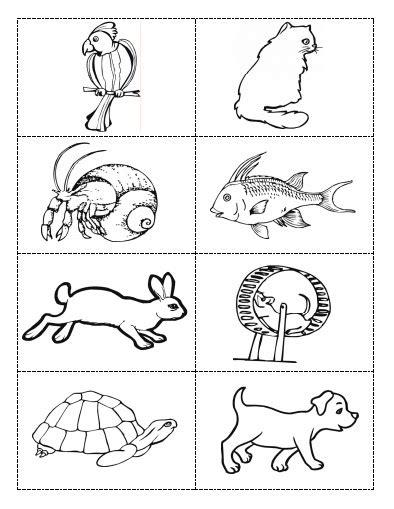 Hayvanlar Alemi Boyama Sayfaları Resimlere Göre Ara Red