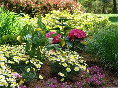 new jersey perennial garden perennial flowers new jersey