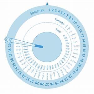 Ssw Mit Geburtstermin Berechnen : gestograma ~ Themetempest.com Abrechnung