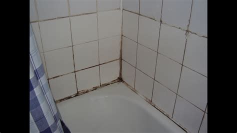 cure damp  mould   bathroom youtube