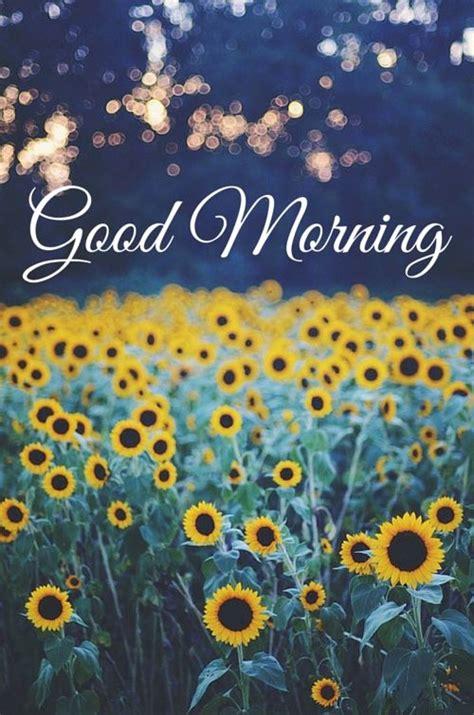 fresh inspirational good morning quotes  brighten