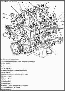 Chevy 350 Engine Intake Parts  U2022 Downloaddescargar Com