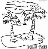 Palm Coloring Tree Pages Island Drawing Printable Adults Trees Sheets Adult Sheet Pretty Step Popular Palmtree Birijus Getdrawings Template sketch template