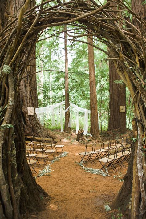 Romance In The Redwoods A Forest Wedding In 2019