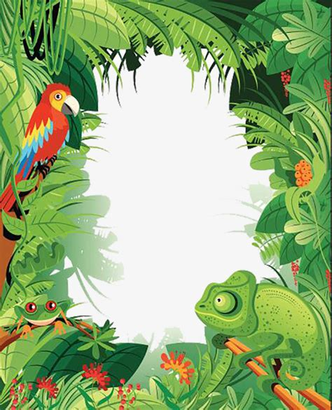 tropical wild templat tropical rainforest animals rainforest summer rainforest