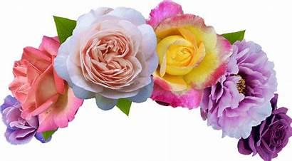 Crown Transparent Flower Crowns Colorful Mix Pngio