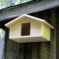 mourning dove nesting box plans wooden plans wood ladder shelf birds nest boxes mourning