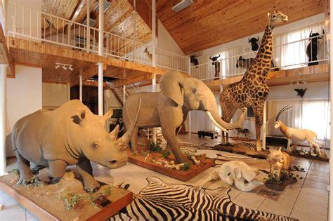 trophy room bankfontein peter flack hunter writer