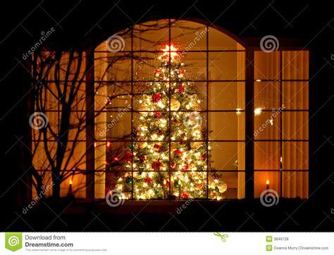home christmas tree  window royalty  stock