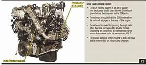 6 4l Egr Coolers