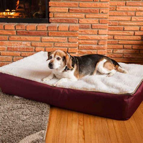 Snoozer Dog Bed Orthopedic