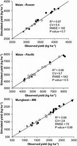 Observed And Simulated Sole Crop Yields Of Local Inbred