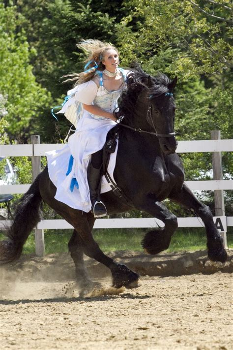 friesian horse horses rider galloping dressage bitless cook riding bridle haven