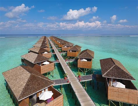 wooden tables maldives resort meeru island resort spa official site