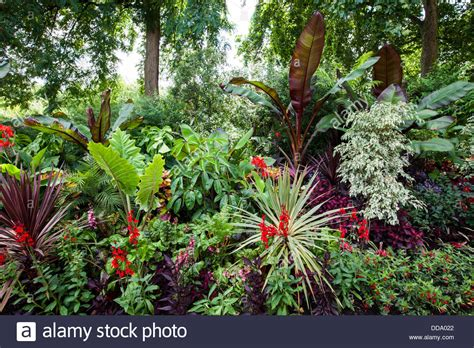tropical gardens images the tropical gardens of st james s park london stock photo royalty free image 59841210 alamy