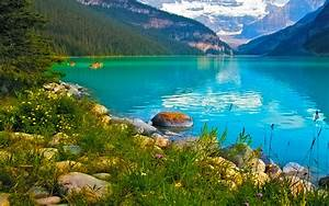 Turquoise, Blue, Lake, Green, Grass, Flowers, Stones, Wallpapers