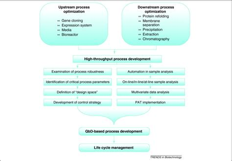 high throughput process development  biopharmaceutical