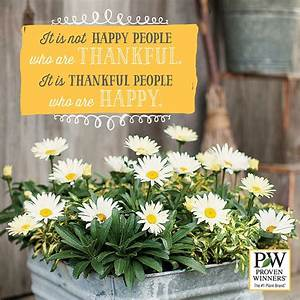 Do flowers make... Garden Happiness Quotes