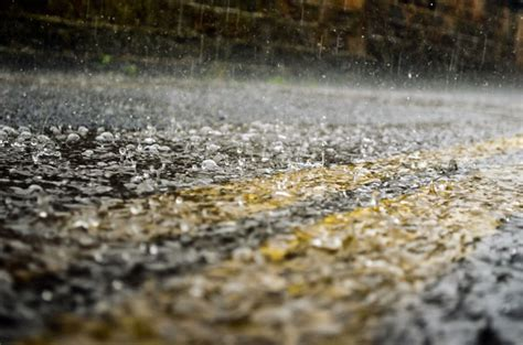 rain  stock photo public domain pictures