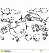 Chicken Coloring Outline Vector Nugget Template Printable Chook Templates Sketch sketch template