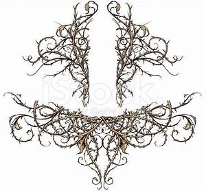 victorian gothic thorns - Google Search | Ornamental ...