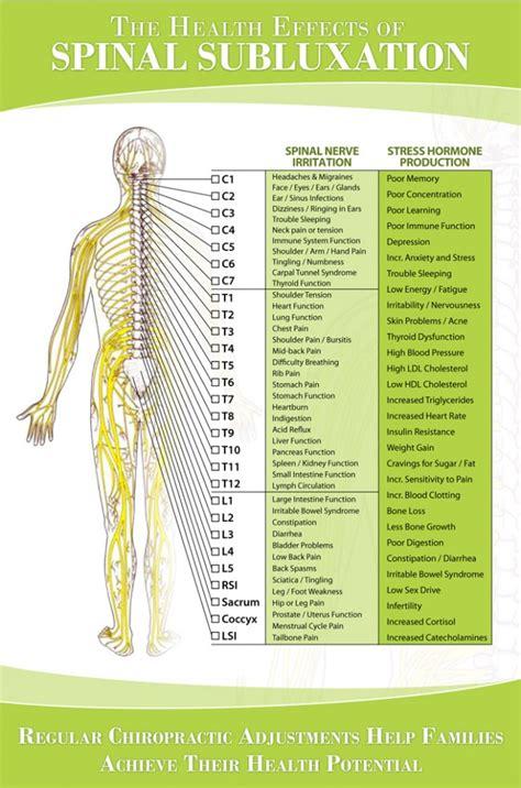 nerve chart hunter chiropractic wellness centre