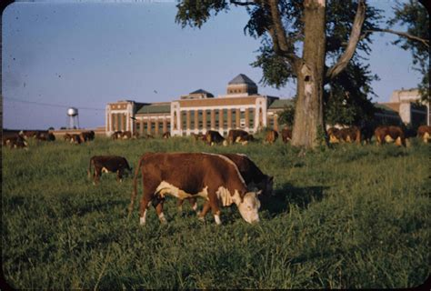 lexington narcotic farm collection fills gap kentucky