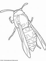 Coloring Jacket Yellow Insecte Pages Clipart Insects Dessin Embroidery Insectes Insect Coloriage Printable Colouring Clipartpanda Coloriages Insecten Fun Spider Patterns sketch template
