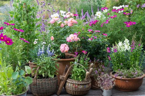Cottage Garden Pots