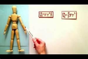 Gehwegplatten 50x50 Gewicht : video wieviel volumen hat ein mensch so berechnen sie den menschlichen k rper ~ Buech-reservation.com Haus und Dekorationen