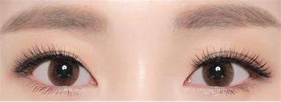 Brown Monet Neo Astigmatism Lenses Circle Contacts