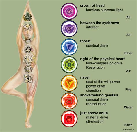 chakra colors in order house of divinity chakras