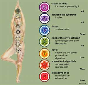 House Of Divinity  Chakras