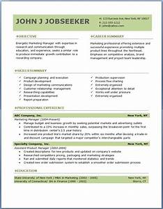 professional resume template 3 resume cv With free professional resume samples