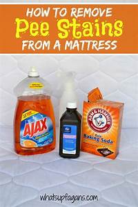 Pee stains, How to remove and Mattress on Pinterest
