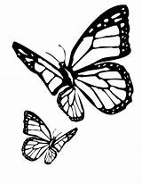 Butterfly Coloring Pages Butterflies Colouring Printable Monarch Flitting sketch template