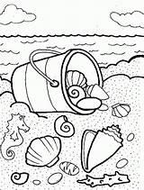 Sea Coloring Shells Seashells Shell Colouring Printable Malvorlagen Ausmalbilder Sheets Bucket Ocean Adult Colorare Disegni Conchiglie Gratis Tocolor Seashell Ausmalen sketch template