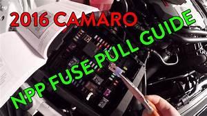 Guide  Camaro Ss  U0026 Lt Dual Mode Exhaust  Npp  Fuse Pull